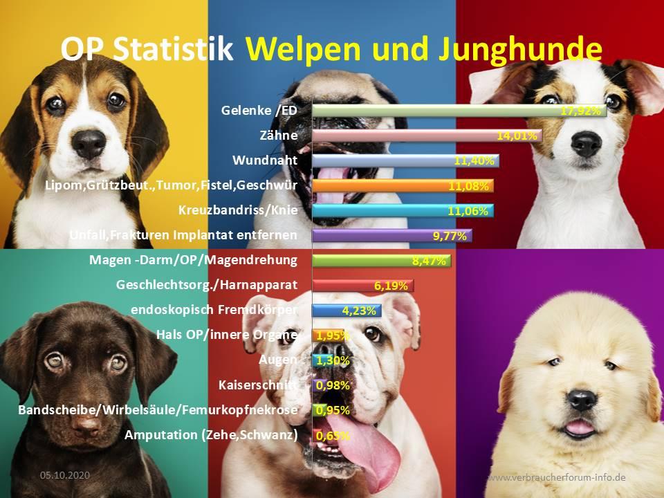 OP Statistik für Welpen und Junghunde