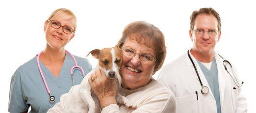 Hundekrankenversicherung incl. OP-Versicherung für Jack Russel Terrier