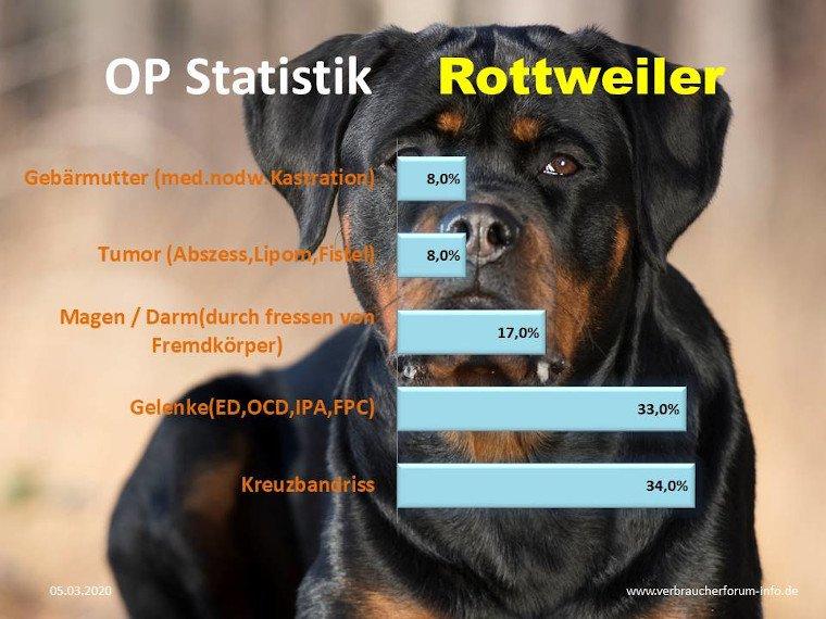 Statistik der häufigsten Krankheiten beim Rottweiler