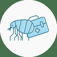 Hundekrankenversicherung für Vorsorge und Impfungen