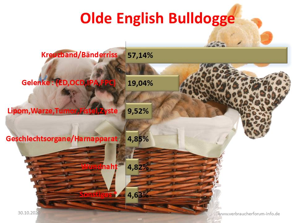 OP Statistik Old English Bulldog